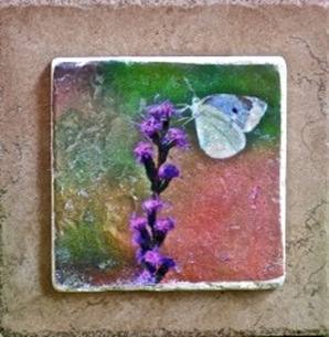 Photograph to tile transfer white butterfly in garden
