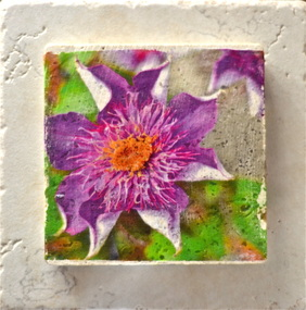 Photograph of purple echinacea flowers transferred to tile